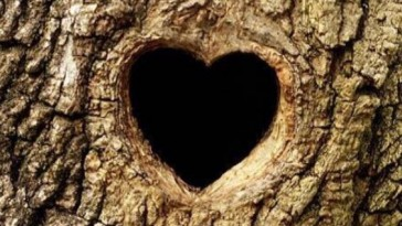 Love Tree with Your Name