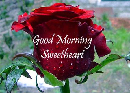 Photo of write on image good morning sweetheart