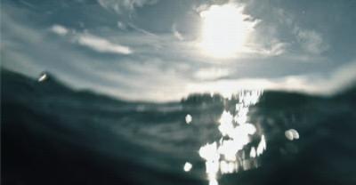 Photo of write on GIF underwater photo
