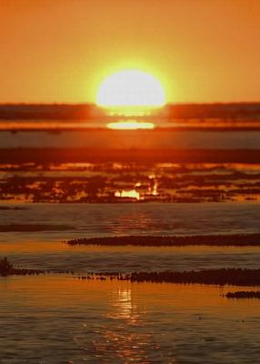 Photo of write on gif sunset photo