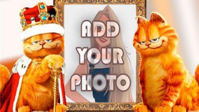 Photo of cats king kids cartoon photo frame