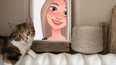 Photo of selfie with cat misc photo frame